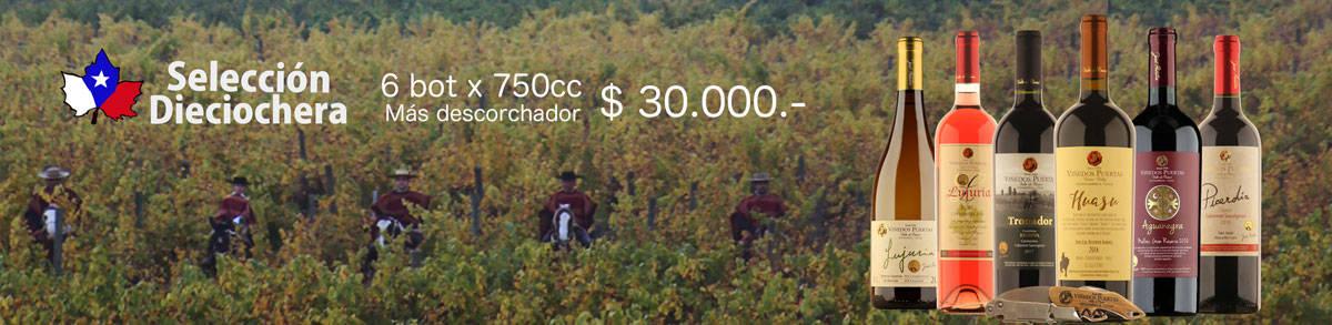 seleccion-dieciochera-banner