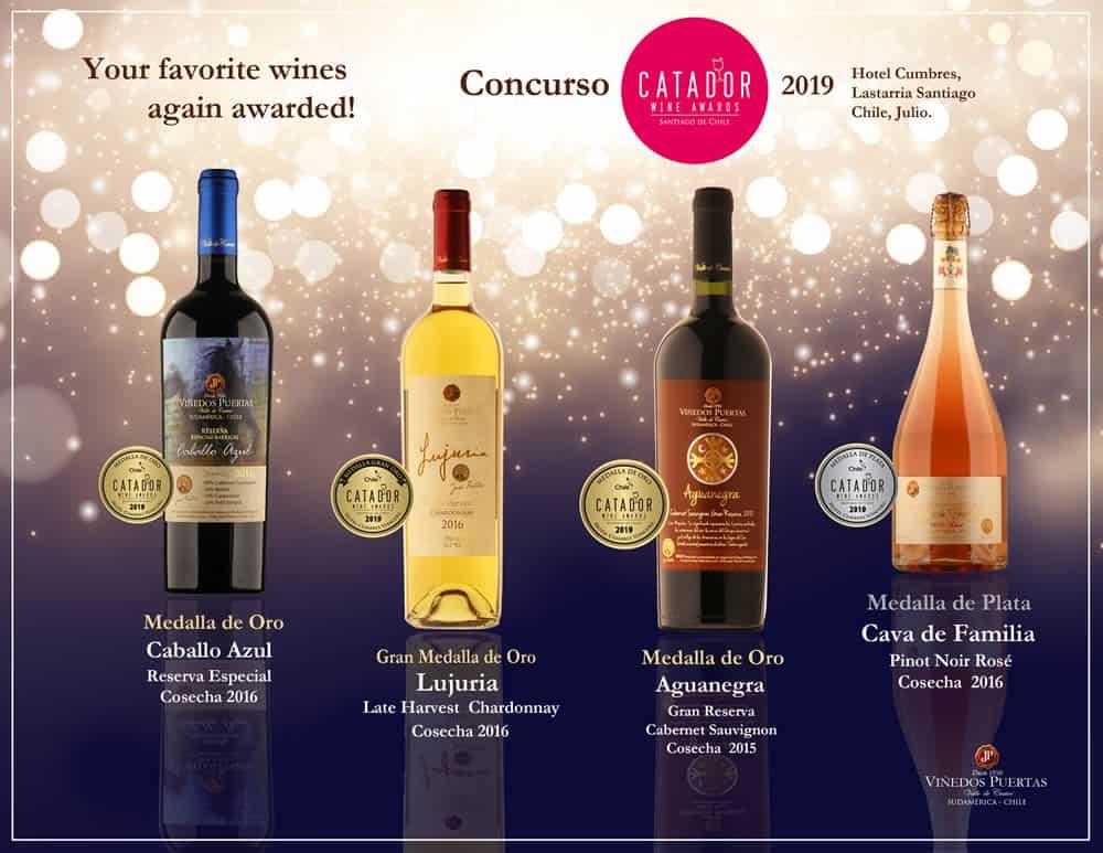 Medallas-obtenidas-Web-espanol-2-Catador-Chile-en-2019