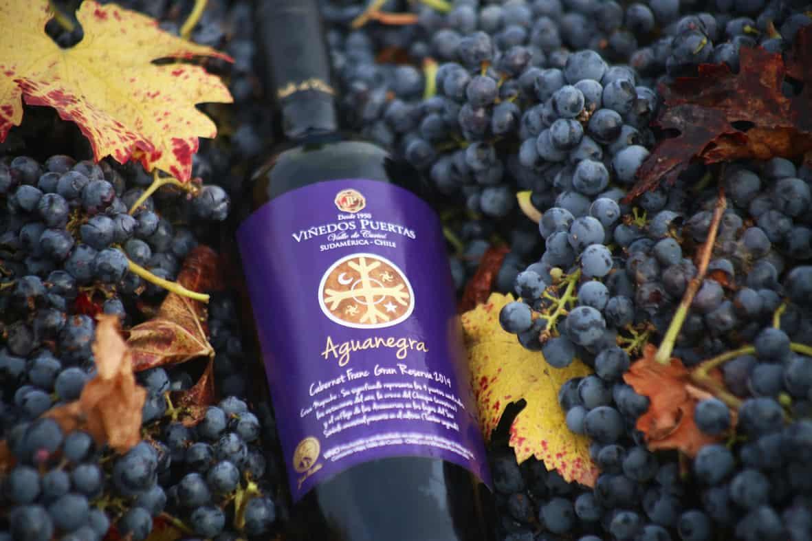 Imagen item vinos Gran Reserva, home sitio web